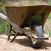 Rusted Wheelbarrow