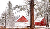 Red Barn in the snow winter morning