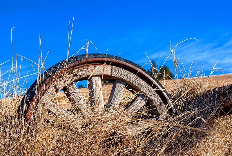 Farm Wheel in the Grass