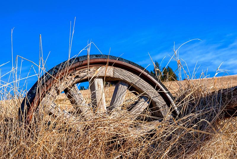 Farm Wheel in the Grass