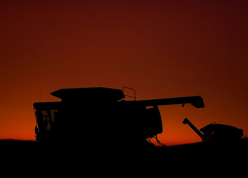 Combines parked after a long day of harvesting.