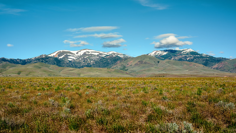 Spring desert and Owyhee mountains