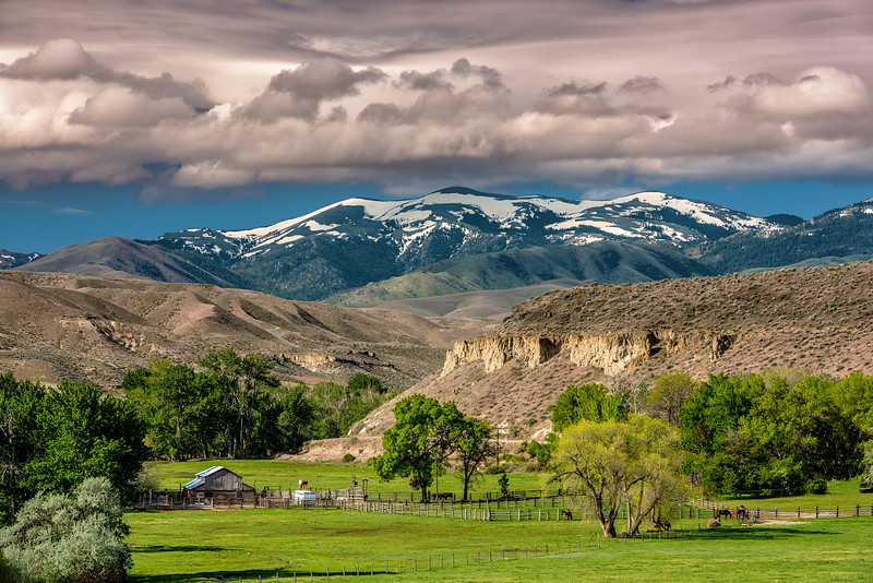 Owyhee mountains and Farm spring morning