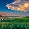Irrigation field Southern Idaho sunset