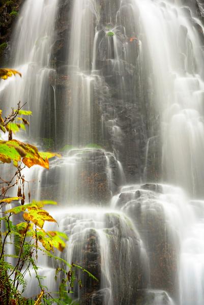 Close up of Fairy Falls Oregon