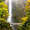 Multnomah Falls and bridge in the fall