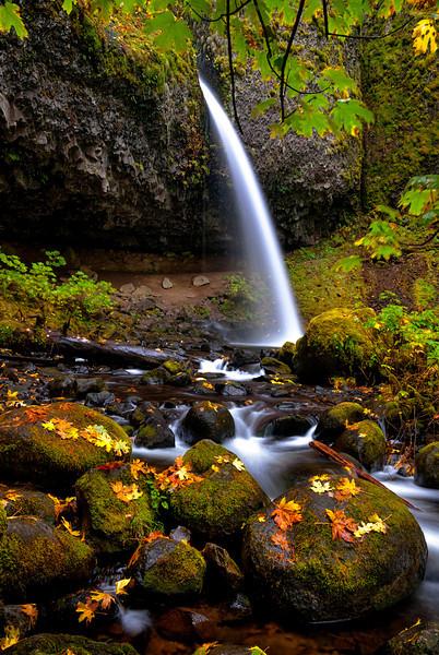 Oregon waterfall in autumn