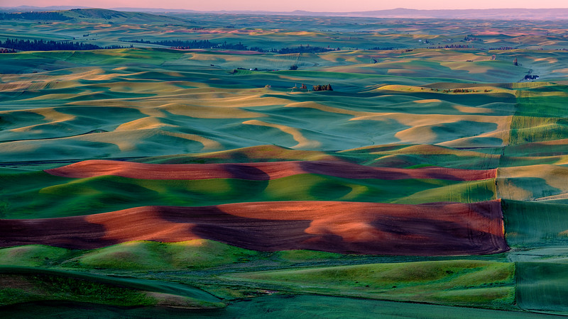 First light on the Palouse of Easter Washington