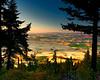 Palouse View from Kamiak Butte 8X10 Format
