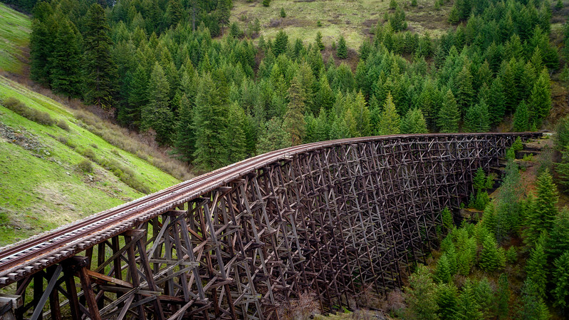 Unique view of a historic train trestle and forest