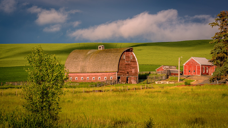 Red Barn Palouse Spring