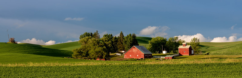 Green fields red barn, and blue sky, that is all you need