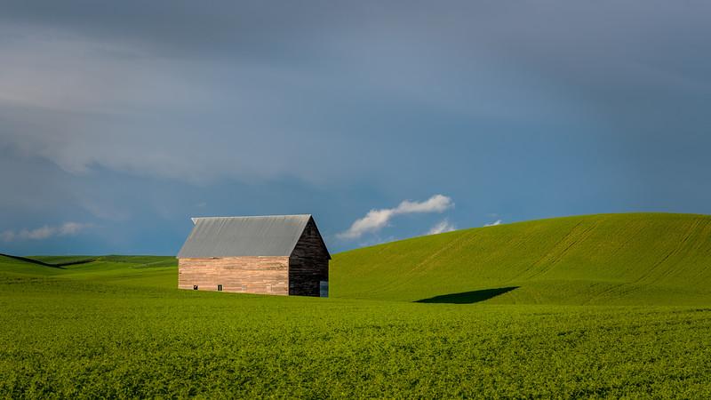 Idaho spring farm with a barn in a green field