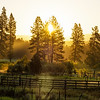 Sunrise over the pastures and forest of Idaho
