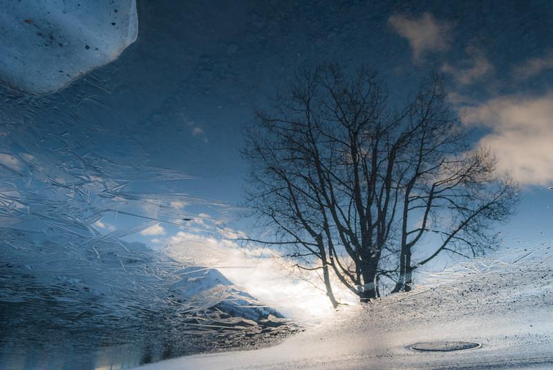 Seward, Alaska Reflection