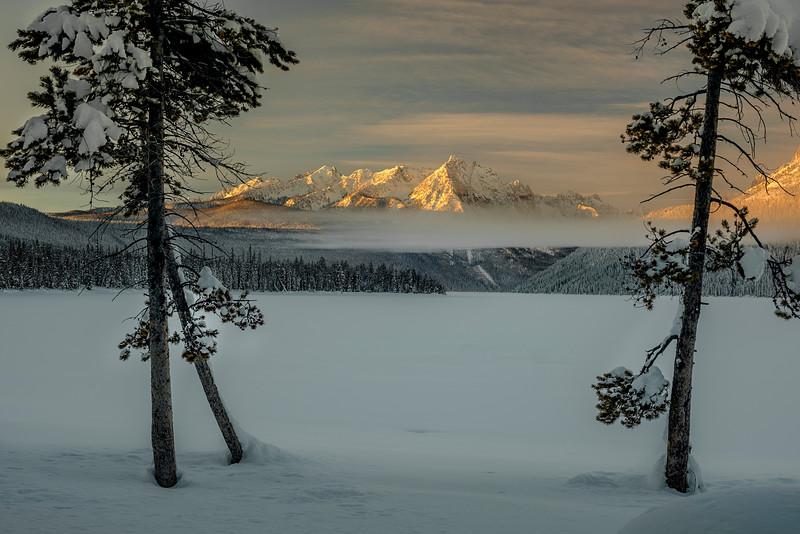 Winter sunrise with gog Redfish Lake Idaho