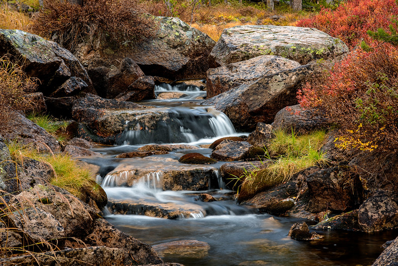 Cascading stream in the Sawtooth National Forest