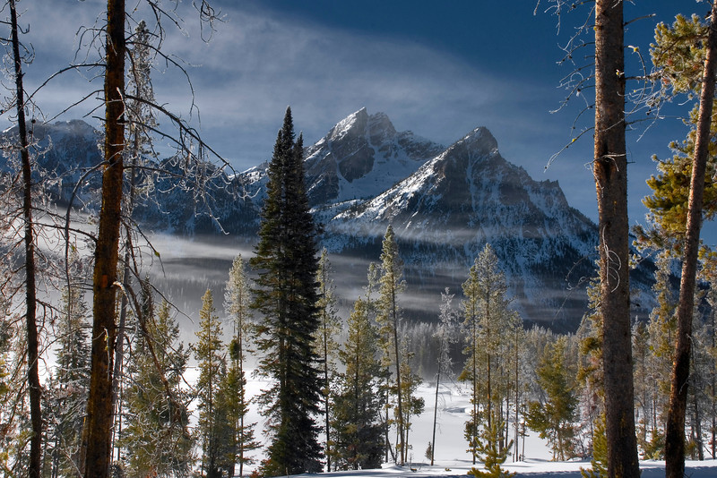 Forest Fog and mountain winter Sawtooth