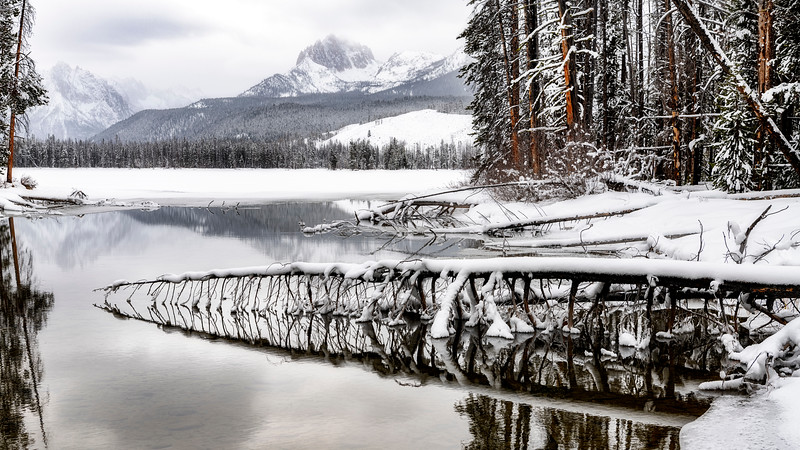Winter Little Redfish lake outlet with log reflection