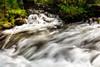 Slow motion water flowes in a creek Idaho wilderness
