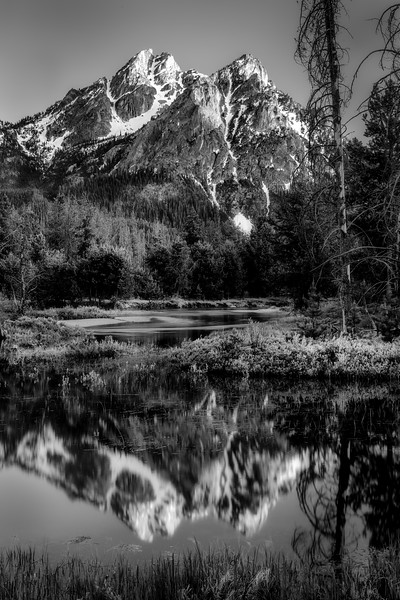 Reflectio in Stanley Lake creek of McGown peak