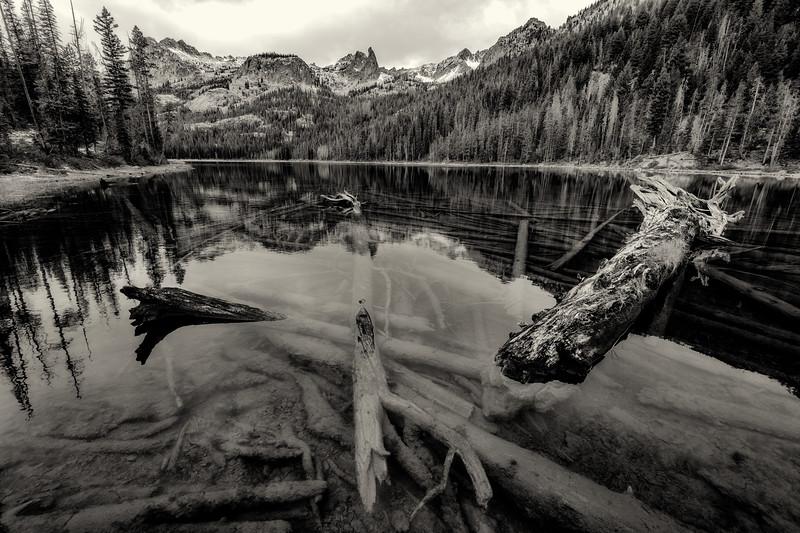 Hellroaring Lake mountain reflection and logs