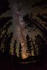 Milky-way Sawtooth National Forest