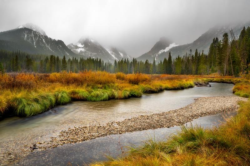 Fishook creek raining morning fall with fog