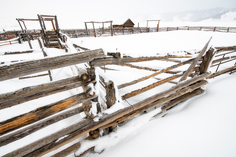 Farmers corral in winter with snow on the fences