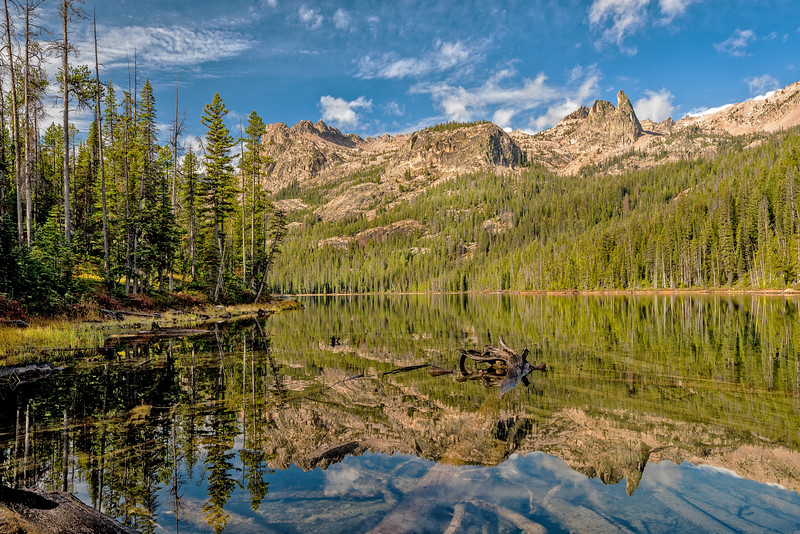 Green forest and mountain lake reflection in Idaho