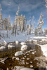 Mushrooms of snow in Redfish Creek