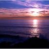 Bodega Headlands