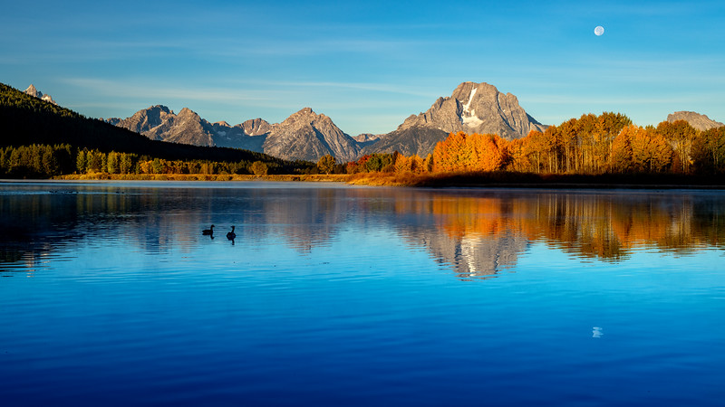 Moon setting over the Tetons at Oxbow with geese in the water