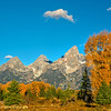 Fall colors and the Tetons with a cloud