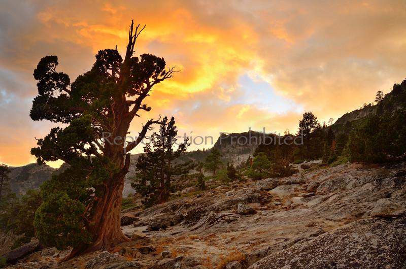 Aflame Above Lake Tahoe, CA. September 2013
