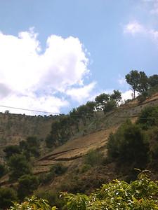 Landscape-034