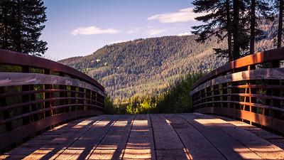 A Bridge to Dog Heaven