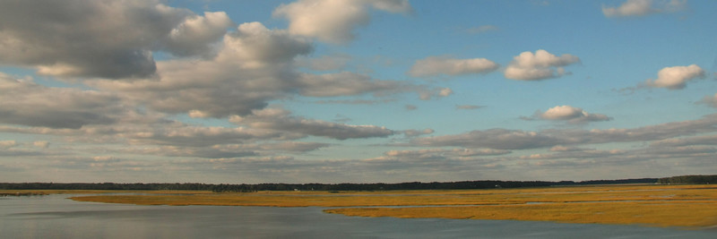 IMG_8919B horizontal crop marsh