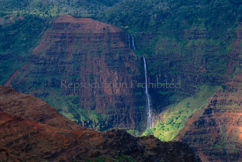 Abundance Waimea Canyon Kauai, HI