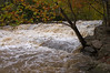 McKeldin Rapids after rain