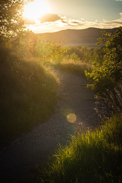 Trail to the Sun