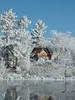 Frosty Scene galetta