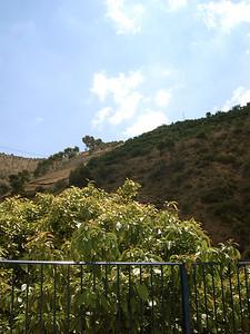 Landscape-036
