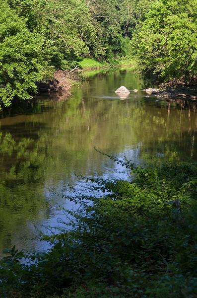 Patapsco River in June