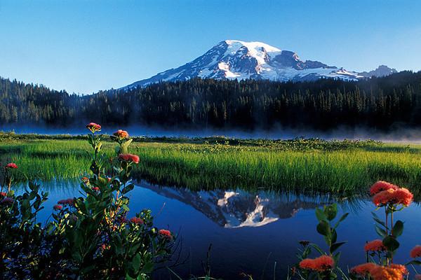 #180 Reflection Lake, Mt. Rainier NP, WA