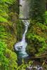 #298 Sol Duc Falls 2, Olympic Natl. Park, WA