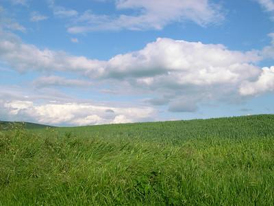 Landscape-009