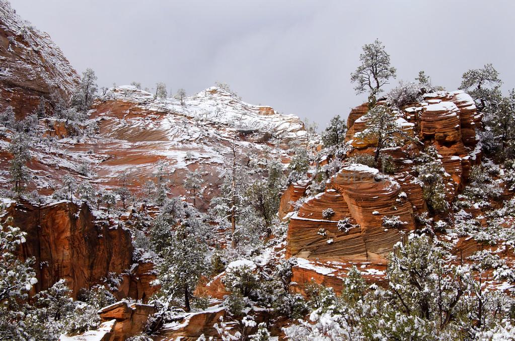 Painted Winter Zion National Park, Utah December 2012