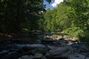 Patapsco River in Summer