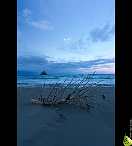 Just something to contrast heavily with yesterdays Urban HDR.  Ran out of time trying to get to Te Arai, so took a quicky at Waiwera.  I can't think of a title so I'm just calling it Waiwera.  Two exposures same settings the difference is I rotated the CPL to first cool the sand then warm the driftwood up to contrast them.  10mm f 7.1 0.4 sec Offset +1&2/3 ISO 100mm CPL used